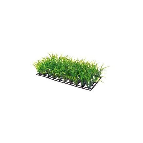PLANT MAT 3 25x12.5cm