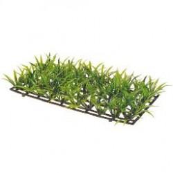 PLANT MAT 2 25x12.5cm