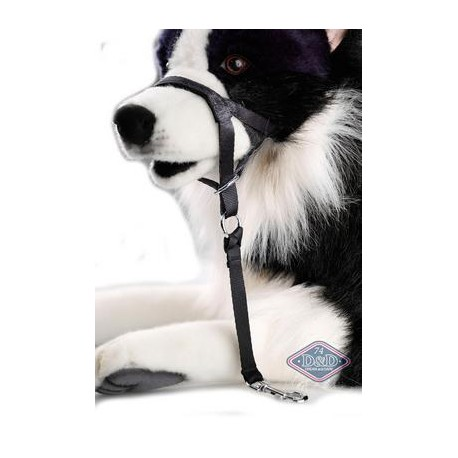 DOG CONTROL M 38-48CM