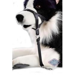 DOG CONTROL XL 48-62CM